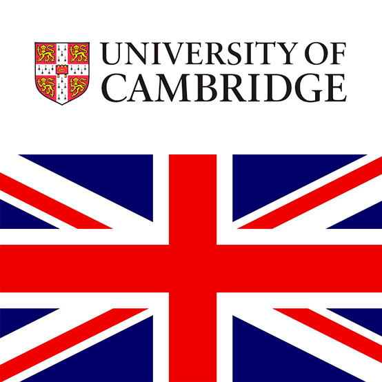 Cambridge B1, B2 y C1